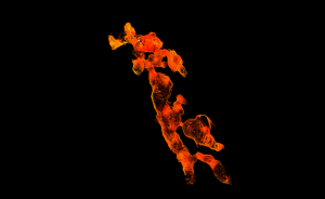 A 3D image of Mammoth Cave produced from this year's LiDAR scans