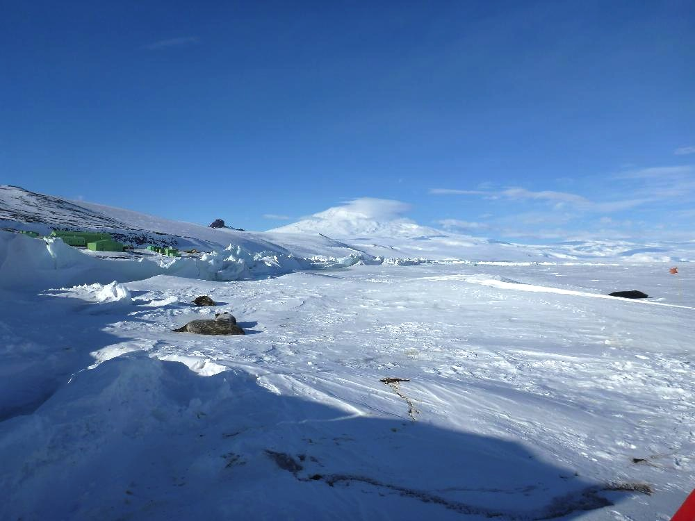 That's Erebus volcano in the background, rising 3,974 meters above the sea ice.